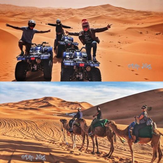 Desert Ride_Collage